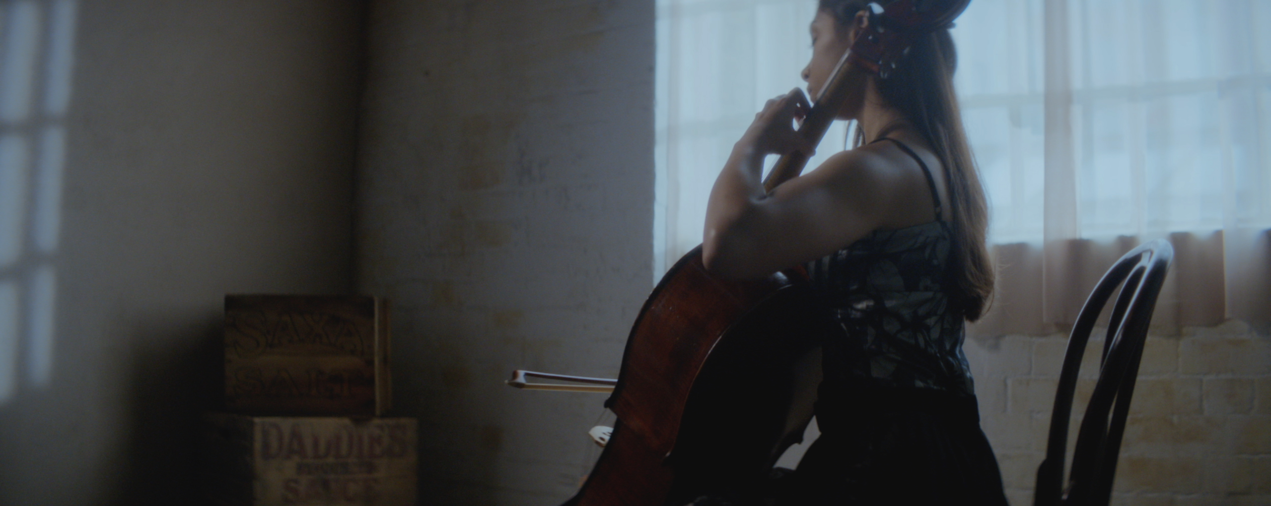 PALOMA CELLO